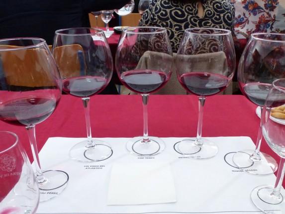muestra de vinos tintos de la provincia de cádiz