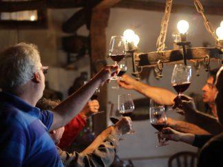 al sur gourmet catas vinos cádiz