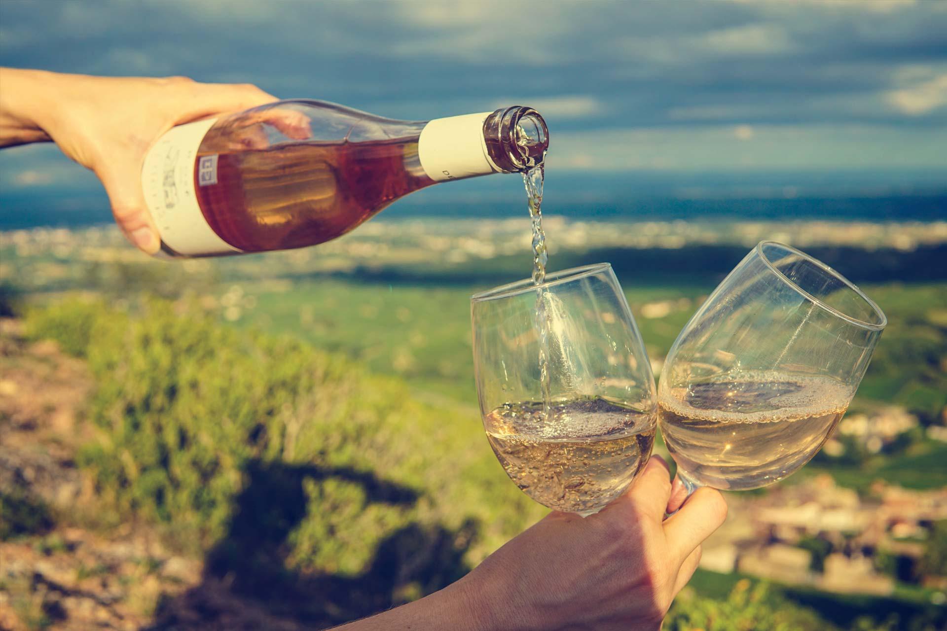 venta vinos cádiz al sur gourmet el puerto santa maría
