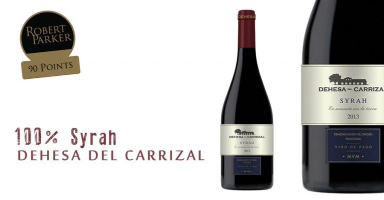 dehesa del carrizal syrah al sur gourmet vino de pago
